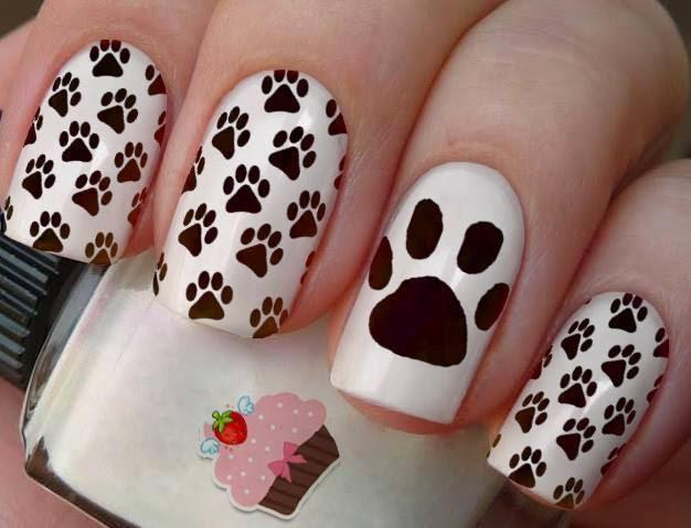 Uñas perros 4